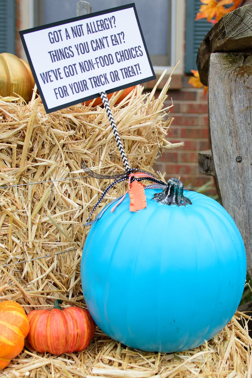 teal pumpkin sitting on a bale of hay