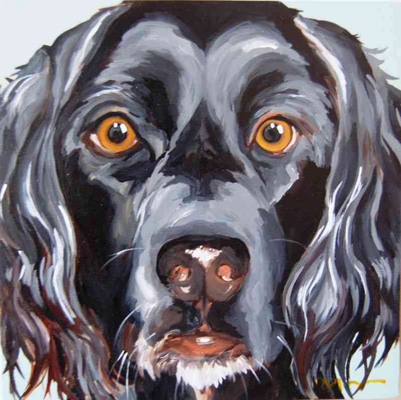black retriever/spaniel mix dog painting