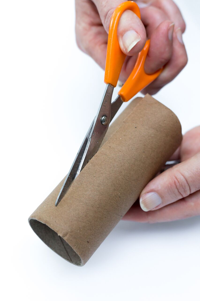 cut a toilet paper tube in half the long way