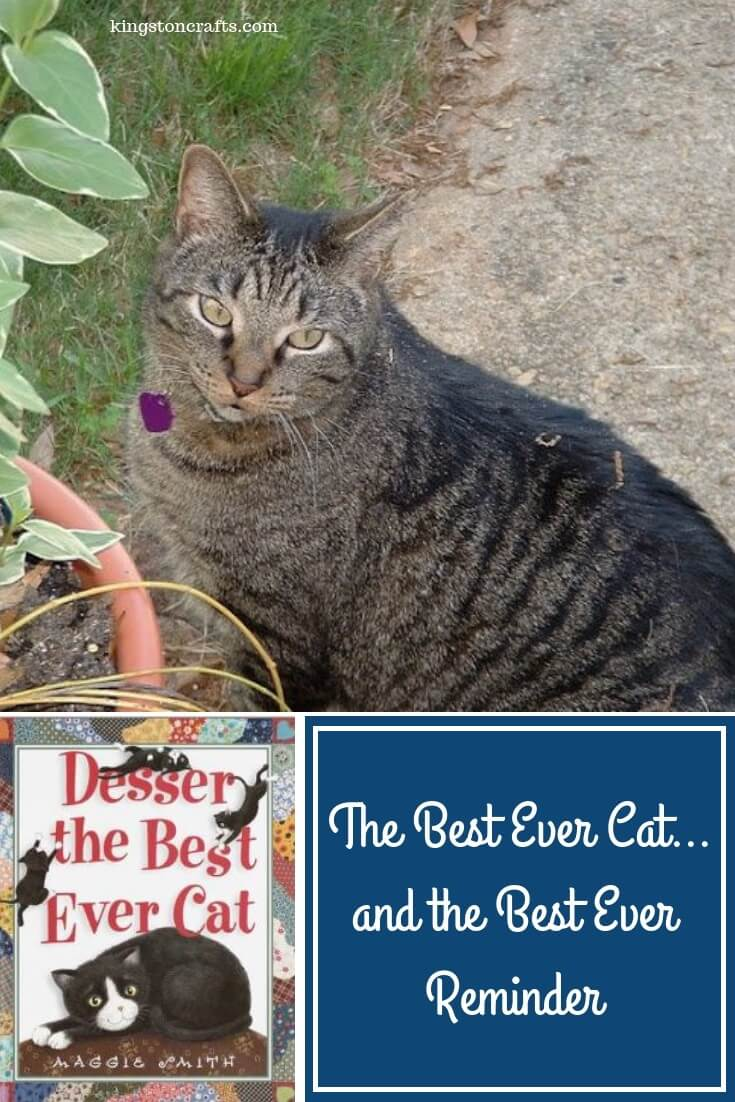 The Best Ever Cat…and the Best Ever Reminder - The Kingston Home: A few months ago, my friend Christy and her family lost Tupi, their beloved cat of 14 years. The kids had received Desser the Best Ever Cat, tissue warning - if you are a pet lover this book is a weeper! via @craftykingstons