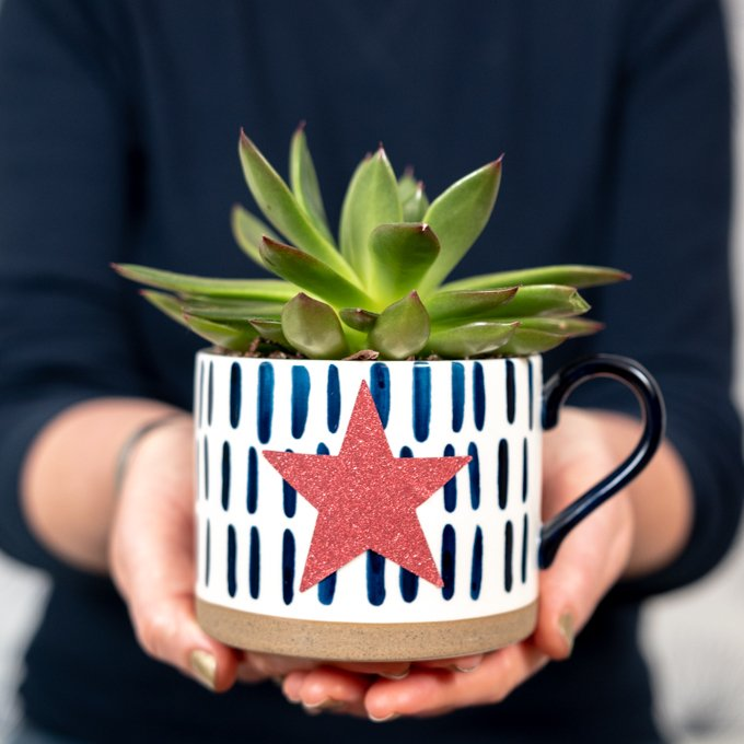 woman holding plant in cup