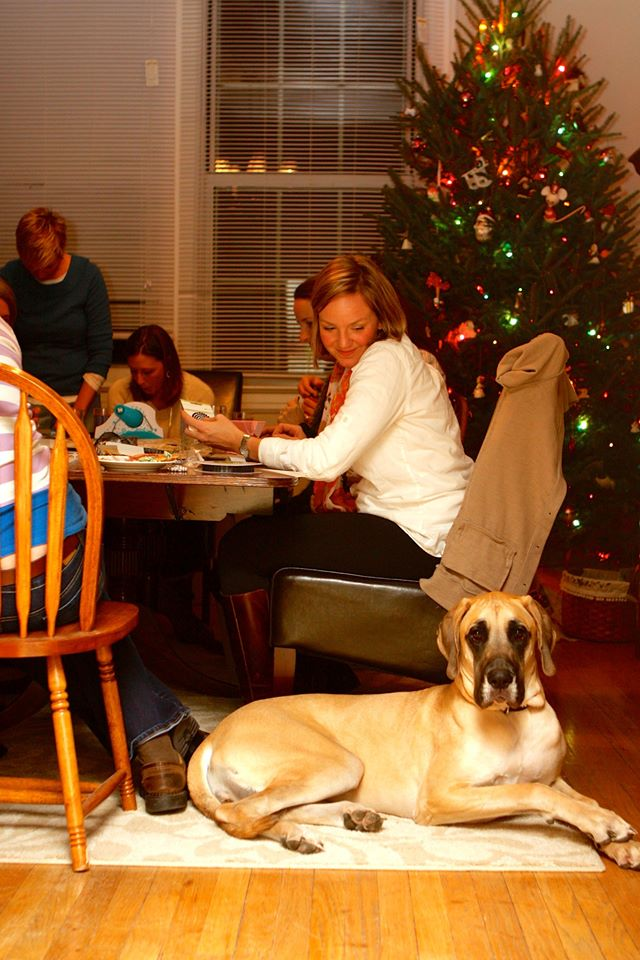 A person sitting at a table with a dog