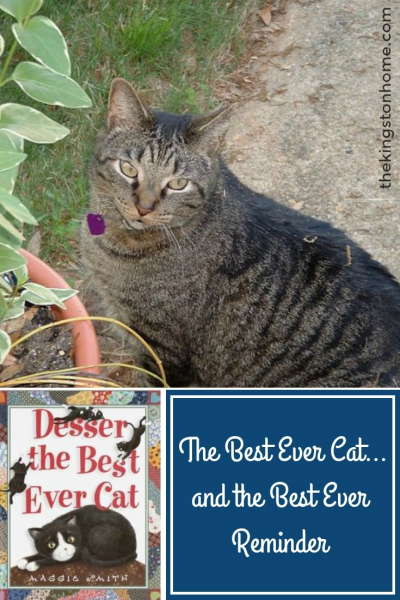 The Best Ever Cat…and the Best Ever Reminder - The Kingston Home