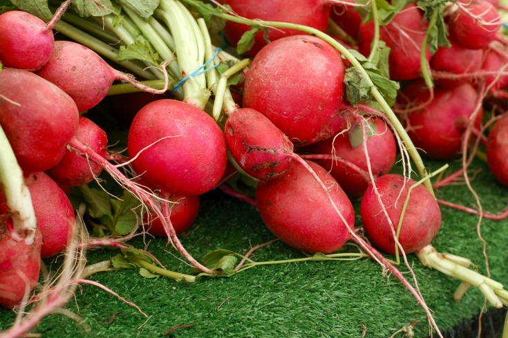 most rewarding vegetables to grow radishes