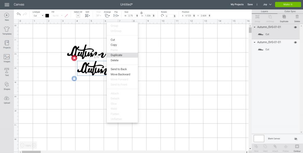 SVG file in design space
