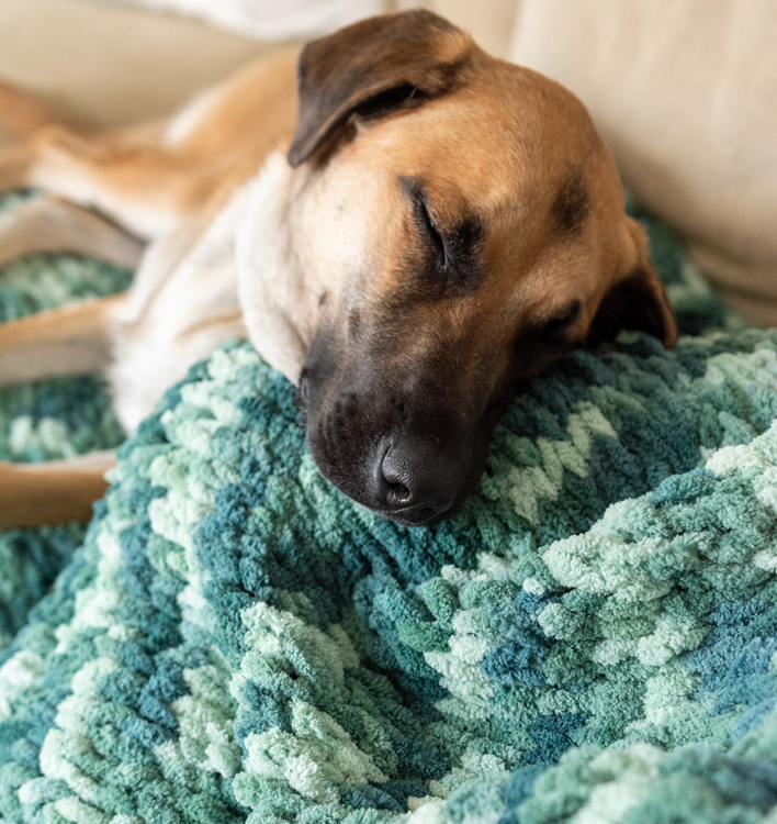 dog laying on finger knit blanket